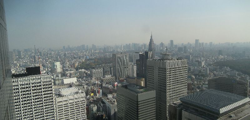 Tokyo Panorama from Top of Government Building